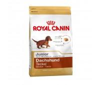 Royal Canin Dachshund Junior Для щенков собак породы такса в возрасте до 10 меяцев