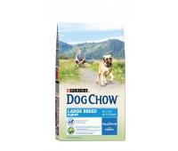Dog Chow (Дог Чау) для собак крупных пород индейка