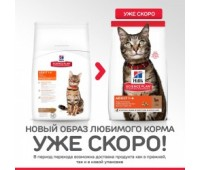 Hill's Science Plan для взрослых кошек с ягненком, Feline Adult Optimal Care with Lamb